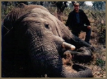 International Africa Safari Consultant Jeff