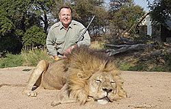 Zimbabwe Lion Hunting Safaris